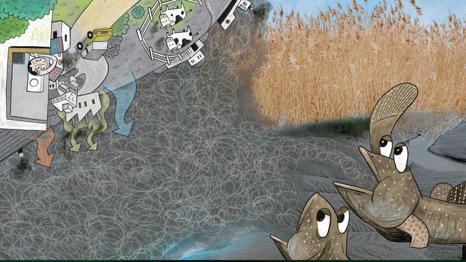 바다가 지구 온난화를 막는다고?! 블루카본