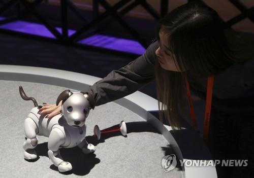 CES 2019 소니 '아이보'