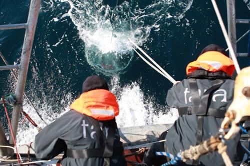 바다에서 시료를 모으고 있는 연구진