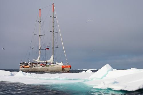 항해하는 '타라'의 모습