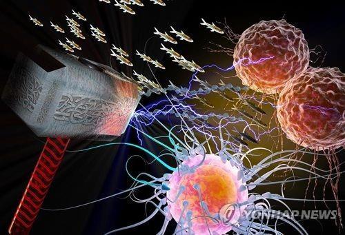 암세포 성장 유도하는 토르 유전자 개념도