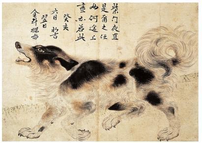 조선 영조 때 궁중화가 김두량의 삽살개 그림