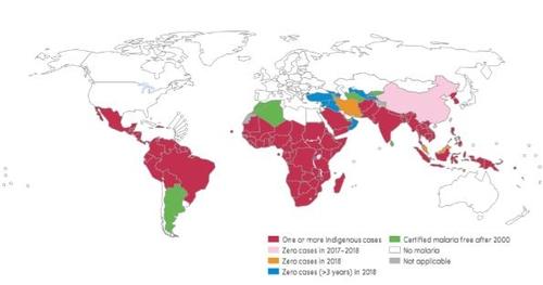 2018년 말라리아 환자 위험 국가 분포