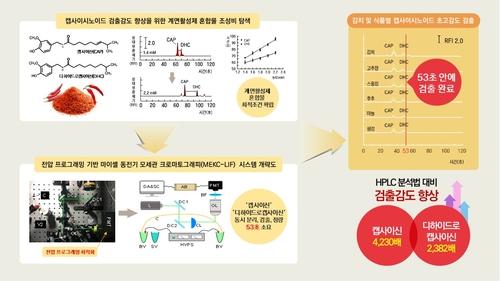 김치 매운맛 초고속 분석법