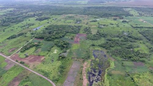 마야문명 유적이 발견된 아구아다 페닉스 지역 항공사진