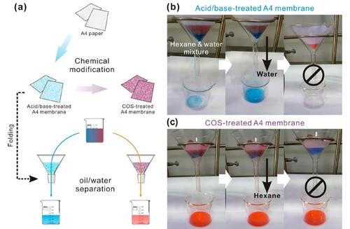 A4 용지로 셀룰로스 막 만드는 과정(왼쪽)과 물-기름 분리실험 모습