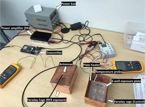 제브라피시 배아 5G 전자파 노출 실험 장치