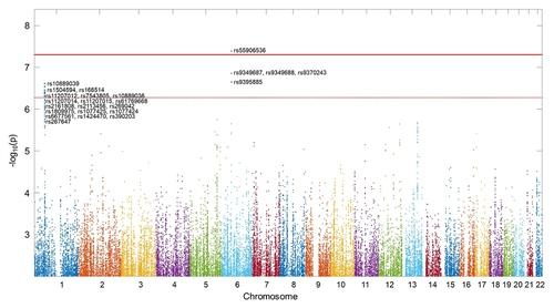 아밀로이드·타우 단백질과는 독립적으로 인지를 떨어뜨리는 유전인자