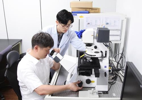크리스퍼 유전자 가위 정확도 연구하는 생명연 연구팀