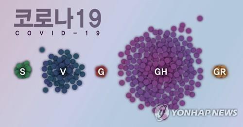 국내 유행 코로나19 바이러스 그룹 (PG)