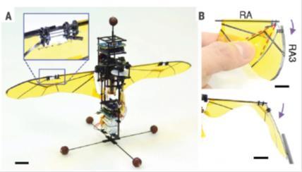 펼침-접힘 원리를 적용한 인공날개를 갖춘 날갯짓 비행로봇