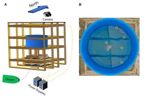 인공자기장 실험 구조