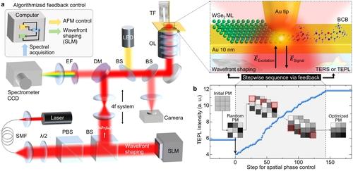 적응형 탐침증강 나노 현미경의 구조와 실험 모식도