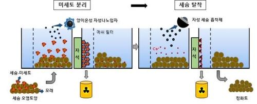 방사성 오염 토양서 세슘 제거 모식도