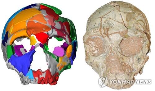 그리스서 21만년 전 현생인류 두개골 발견